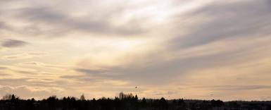 Screen Shot 2014-03-10 at 7.33.42 PM